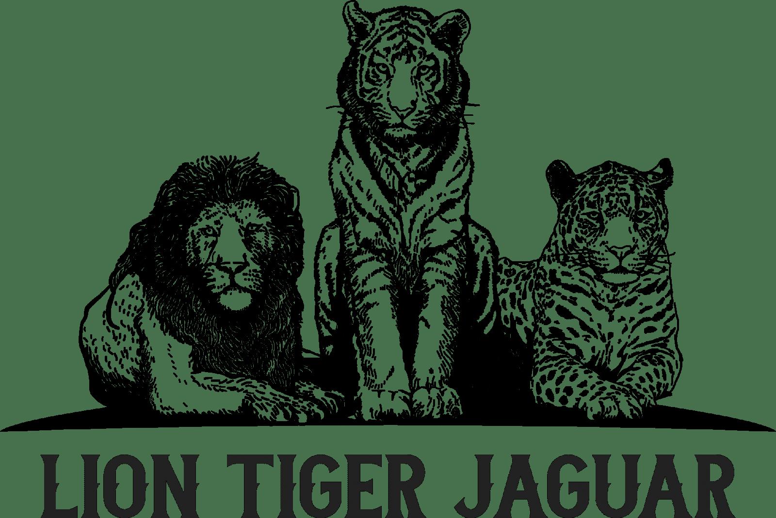 Newsletter Lion Tiger Jaguar Llc